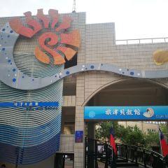 Qijin Shell House User Photo