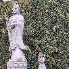 湘山寺用戶圖片