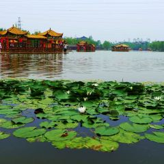 Shahe Wetland Park User Photo