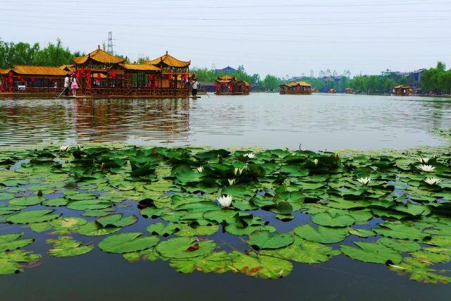 Shahe Wetland Park