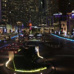 Viva Vision Light Show at Fremont User Photo