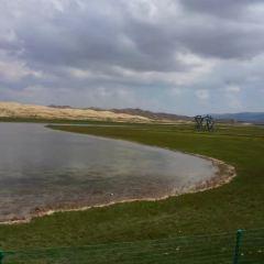 青海湖沙島用戶圖片