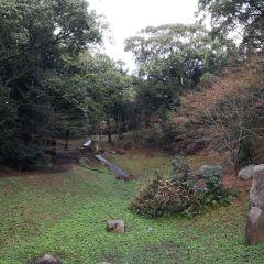 西公園用戶圖片