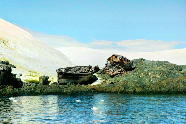 Otway聲音和企鵝保護區