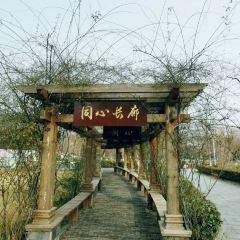 新浦公園用戶圖片