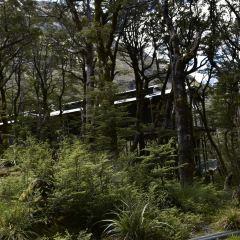 Roys Peak Track User Photo