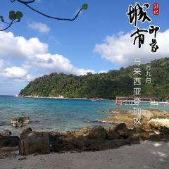 大停泊島用戶圖片