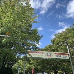 오도리 공원 여행 사진
