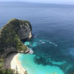 藍夢島張用戶圖片