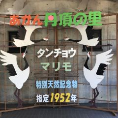 Akan International Crane Centre User Photo