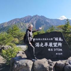 櫻島用戶圖片
