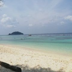 Pulau Payar Marine Park User Photo