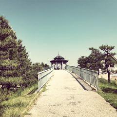 Maiko Park User Photo