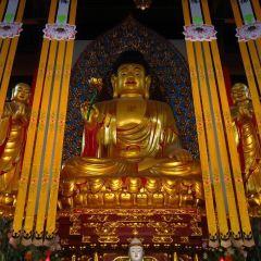 法寶禪寺用戶圖片