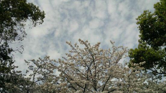 Haishu Park