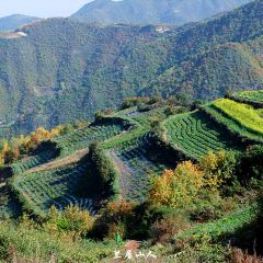 Shifugou Wangta Ecological Park User Photo