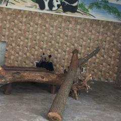 Huai'an Zoo User Photo