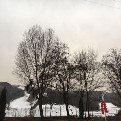 梅苑南山滑雪場用戶圖片