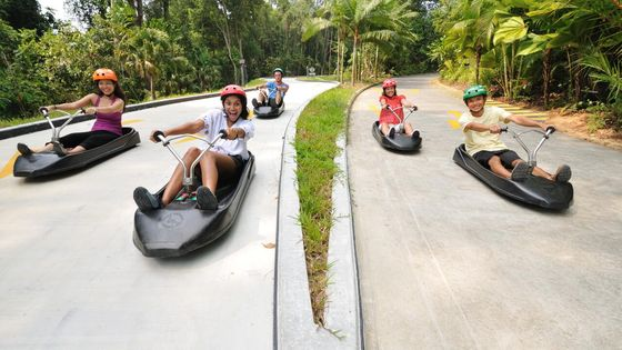 MUST RESERVE | The Skyline Luge Sentosa & Skyride Ticket (2 Rounds / 4 Rounds)