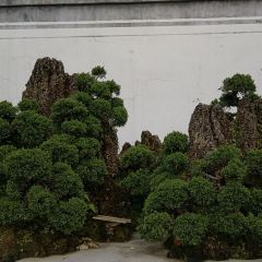 鮑家花園用戶圖片