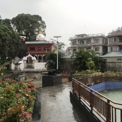 Shree Gaden Dhargay Ling Monastery User Photo
