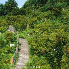 Longquan Mountain User Photo