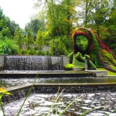 Atlanta Botanical Garden User Photo