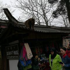 Jieyin Temple User Photo