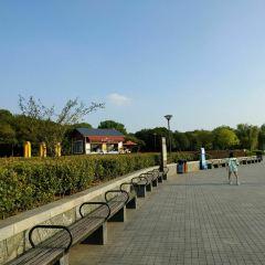 Hangzhou Liberates Monument User Photo