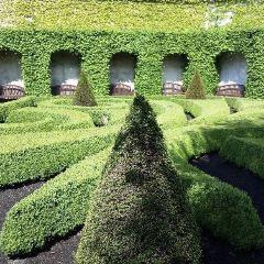 The Vrtba Garden User Photo