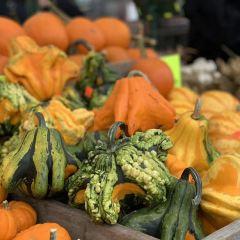 St. Lawrence Market User Photo