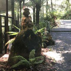 原住民藝術館用戶圖片