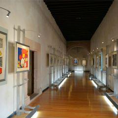 Pedro Coronel Museum (Museo de Pedro Coronel) User Photo