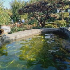 Lancui Lake Tianmu Hot Spring Resort User Photo