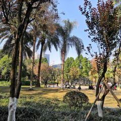 Wenzhou Jiushan Park User Photo