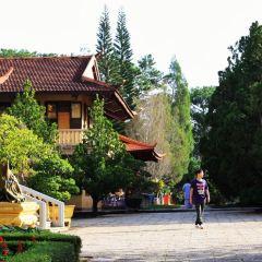 竹林禪院張用戶圖片