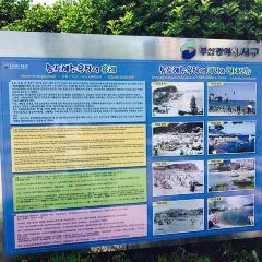 APEC나루공원 여행 사진