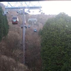 箱根空中纜車張用戶圖片