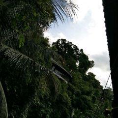 Murni's Warung User Photo