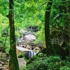 Houwang Village User Photo
