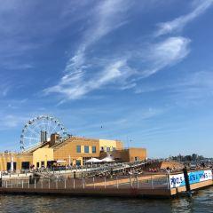 SkyWheel Helsinki User Photo
