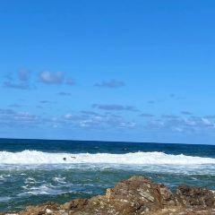 黃金海岸用戶圖片