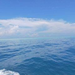 卡帕萊島張用戶圖片