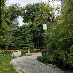 鄧家花園用戶圖片