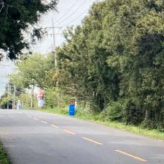 신비의 도로 여행 사진