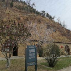Phoenix Hill (Fenghuang Shan) User Photo