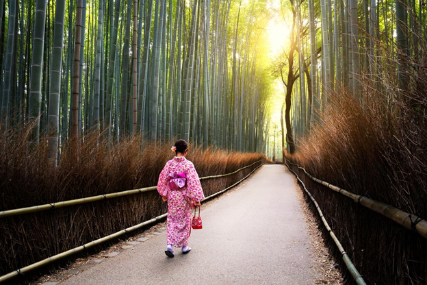 Kimono Experience in Kyoto: Best Rental Stores and Photo Spots