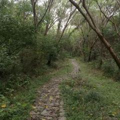 주룽위 여행 사진