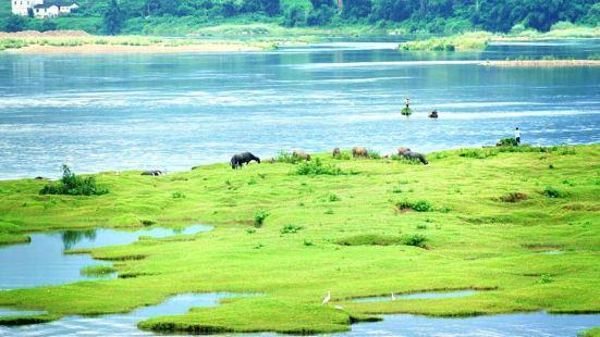 桂江生態旅遊景區