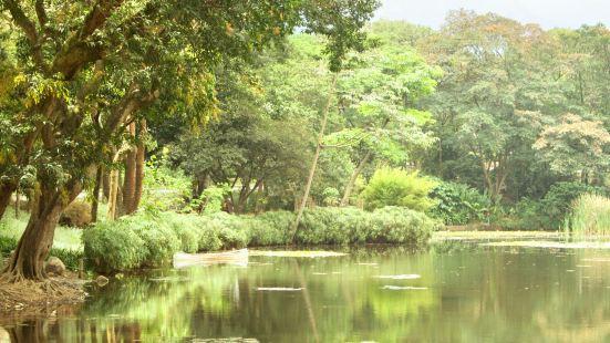 Joaquín Antonio Uribe Botanical Garden (Jardín Botánico Joaquín Antonio Uribe)
